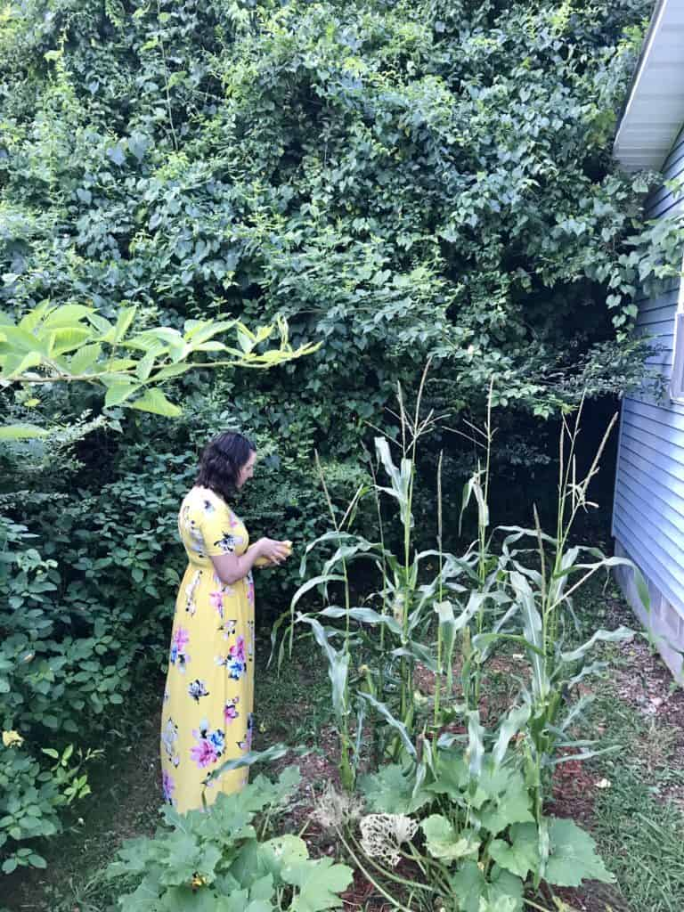 Yellow Maxi Dress Garden Homestead