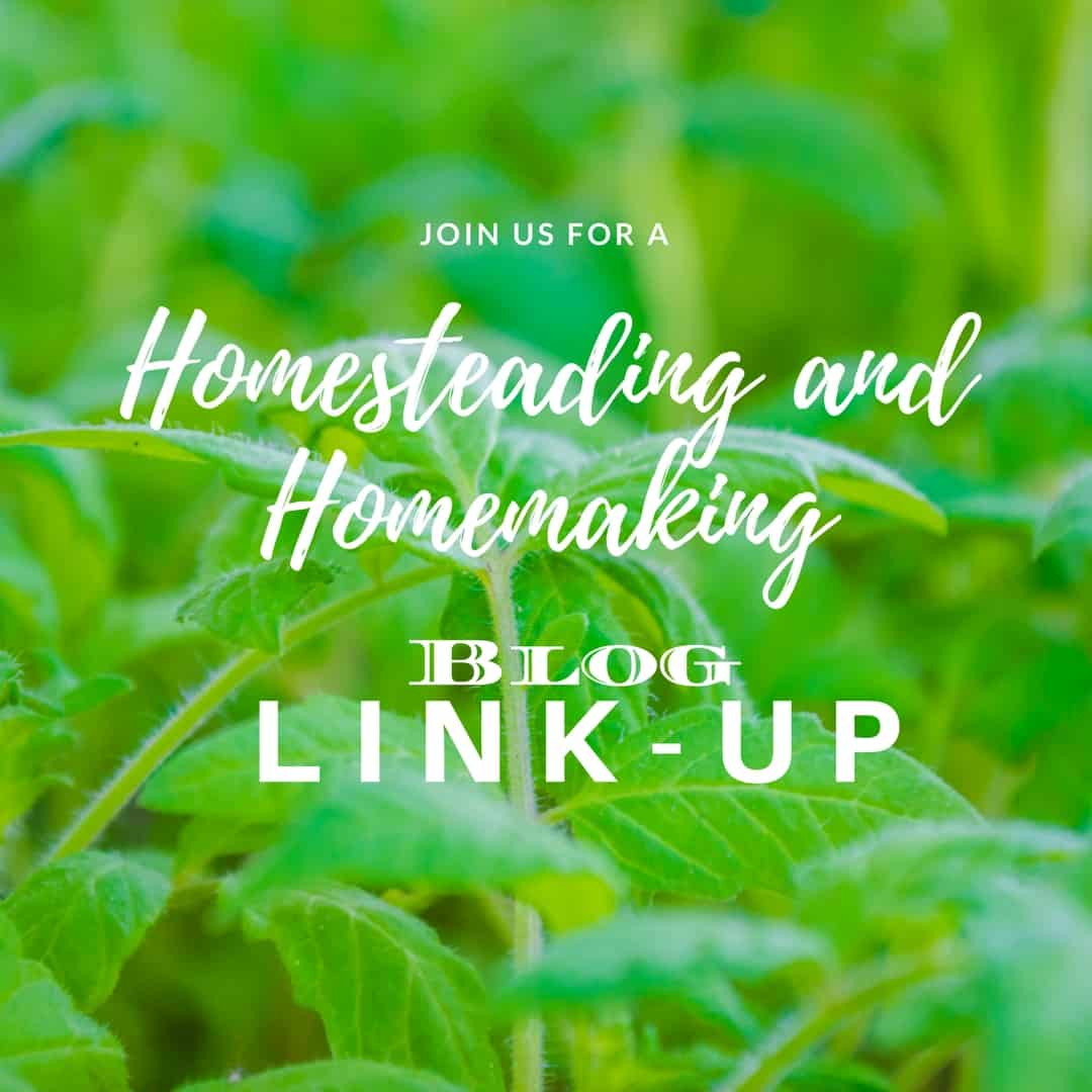 Homesteading and Homemaking Link-Up
