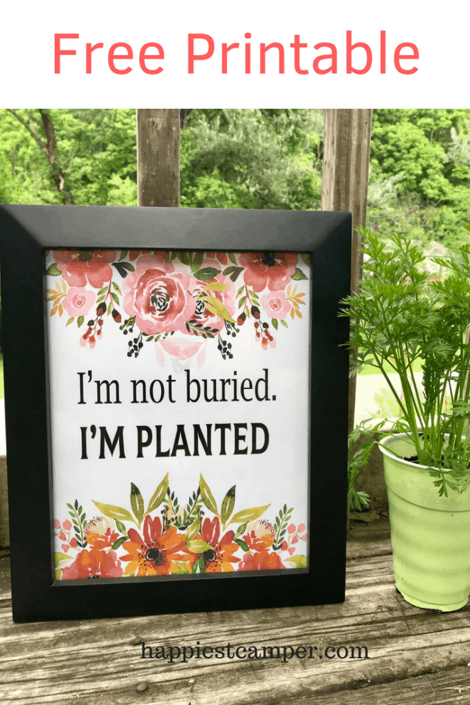I'm Not Buried I'm Planted Free Printable