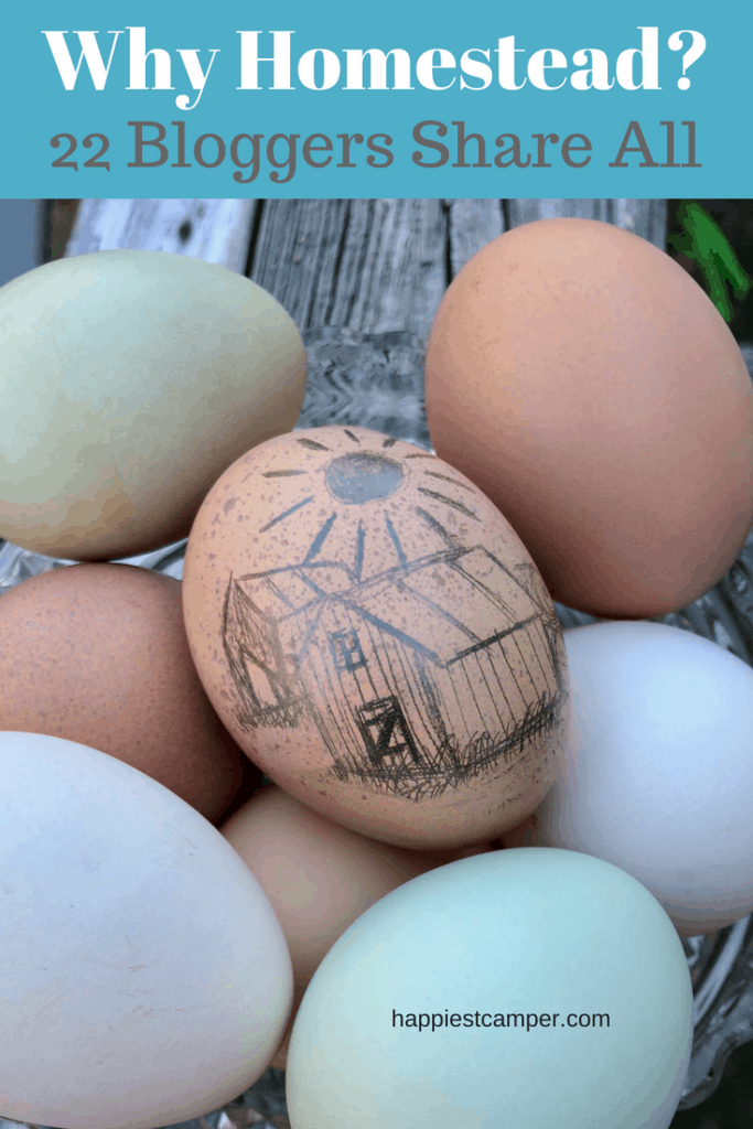 Why Homesteading Bloggers Homestead