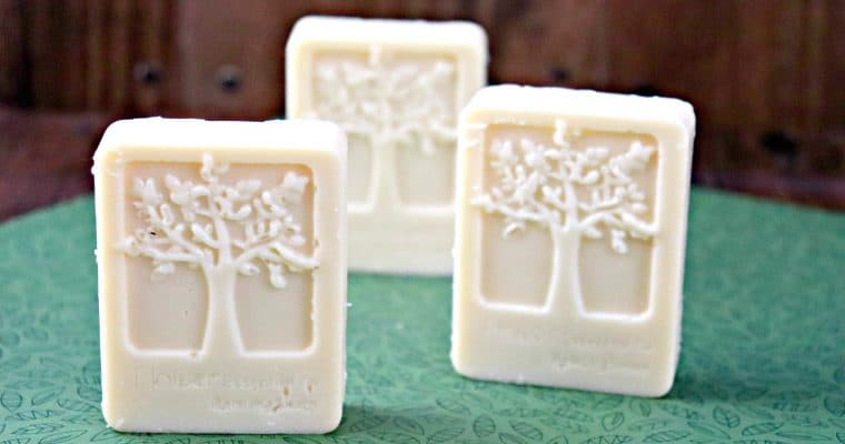 Moisturizing Solid Lotion Bars