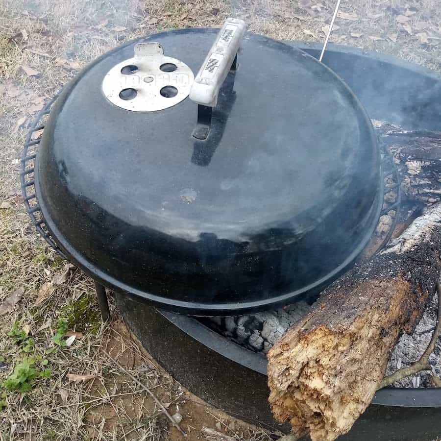 Campfire Grilling