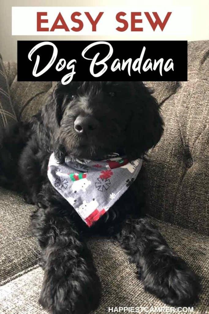 Easy Sew Dog Bandana