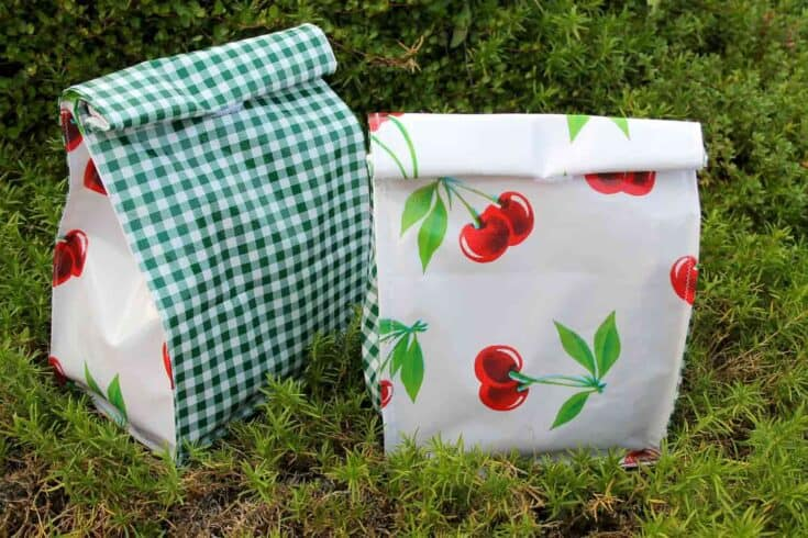 Oilcloth Lunch Bag Create Card