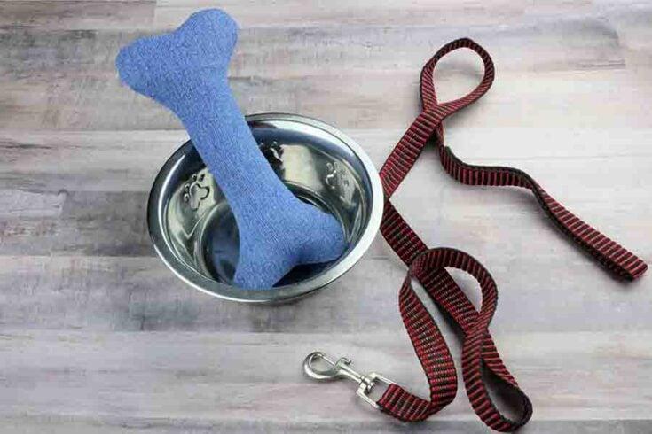 DIY Dog Chew Toy